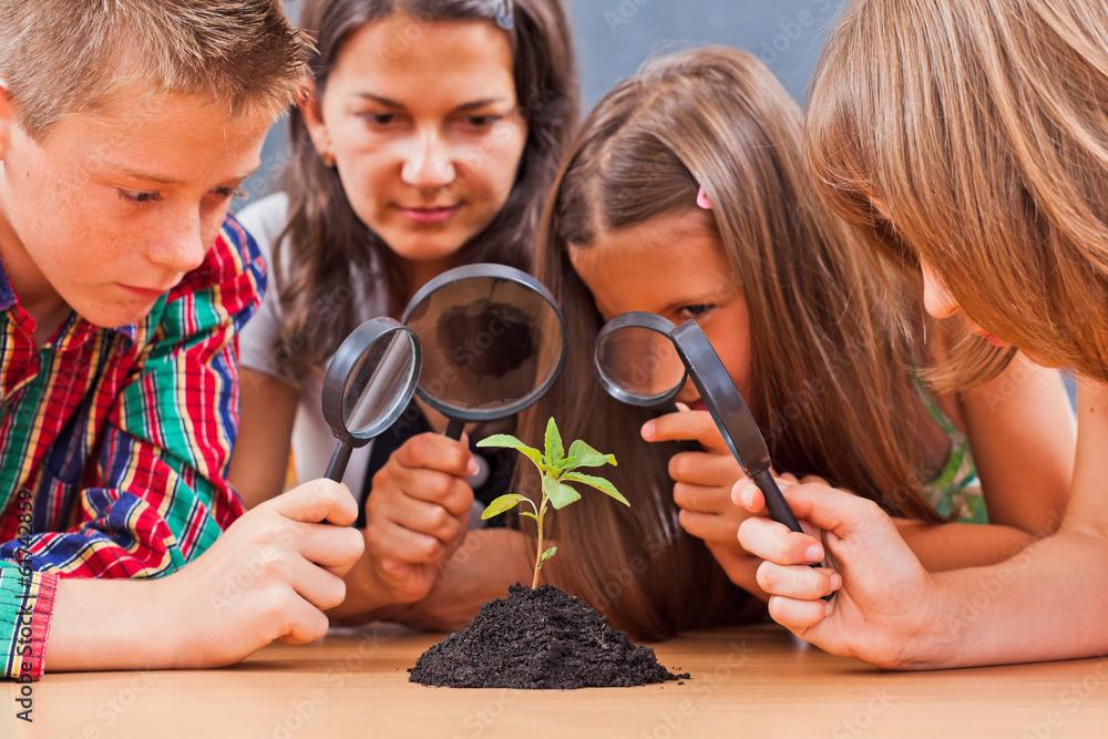 Fototapeta Teacher and pupils in biology class