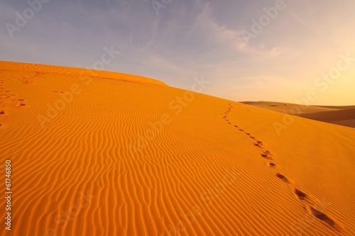 Fototapety, obrazy: Sand Textured and Footprints on Sand Dune