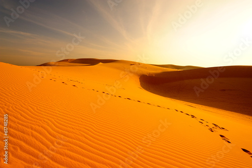 Deurstickers Droogte Sand Dune in Desert Landscape at Sunrise
