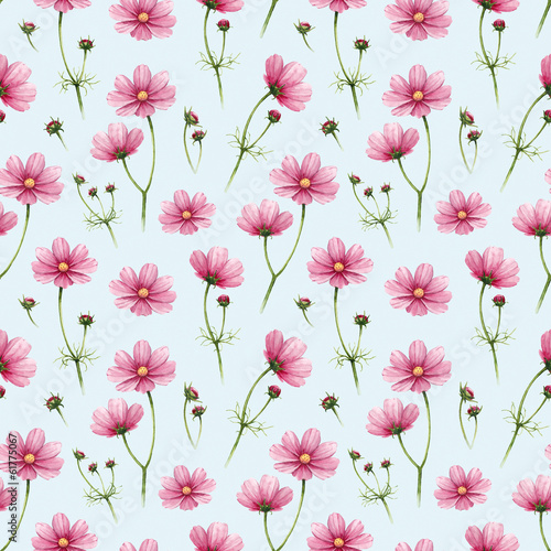 Leinwand Poster Cosmos flowers illustration. Watercolor seamless pattern