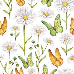 Fototapeta Kwiaty Camomile flowers and butterflies illustration