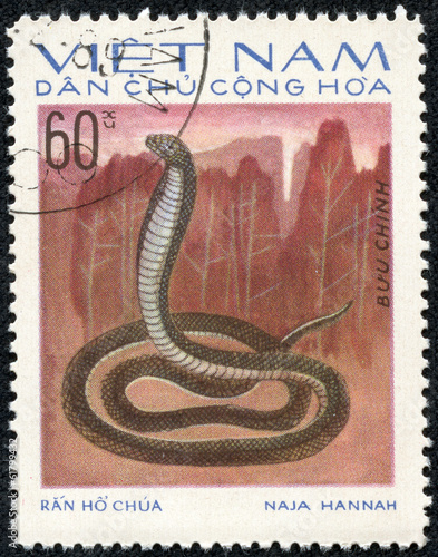 stamp printed in VIETNAM shows a cobra Poster