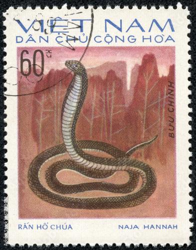Photo  stamp printed in VIETNAM shows a cobra