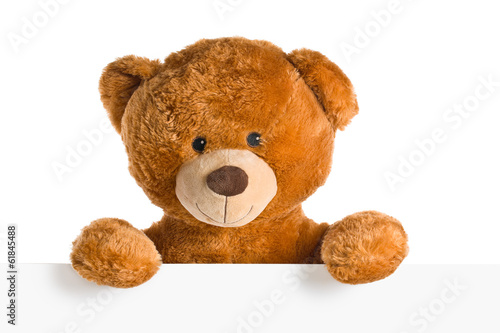 Fotomural teddy bear behind whiteboard