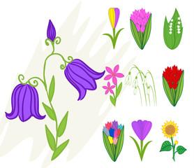 Spring fresh flower vector