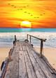amanece en la playa tropical