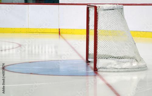 Porta hockey  con balaustra Canvas Print