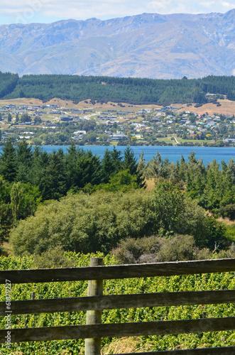 Fotografiet  Wanaka - New Zealand