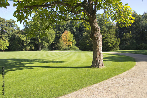 Obraz park landscape - fototapety do salonu