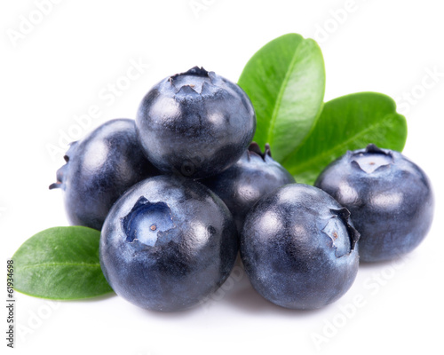 Photographie blueberries isolated