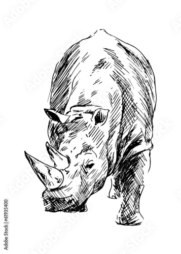 drawing-of-a-rhino-vector-illustration