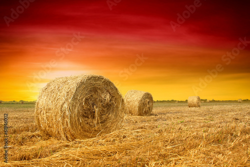 Ingelijste posters Rood traf. Hay bale in the countryside