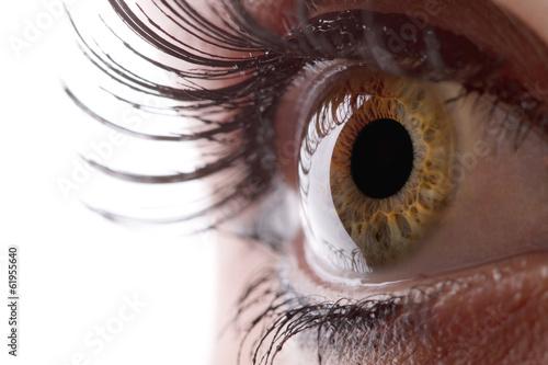 Fotobehang Macrofotografie Human eye