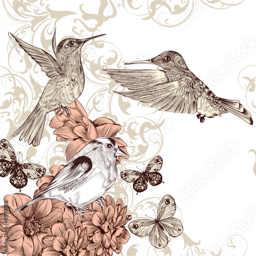 Vector background  with birds and  butterflies