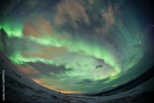 Deurstickers Olijf Northern Lights (aurora borealis)