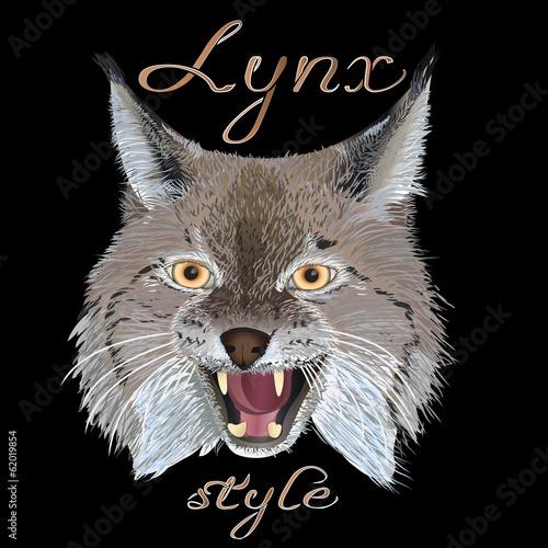 Poster Croquis dessinés à la main des animaux Lynx style