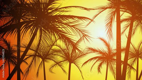 Horizontal illustration silhouettes of palms. #62056825