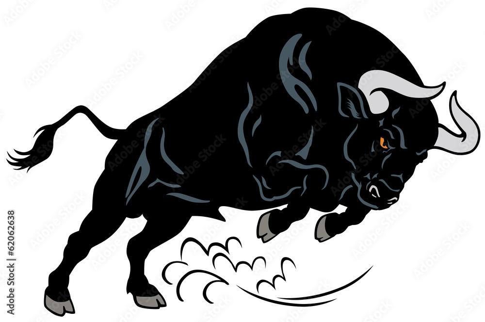 Fototapeta angry bull