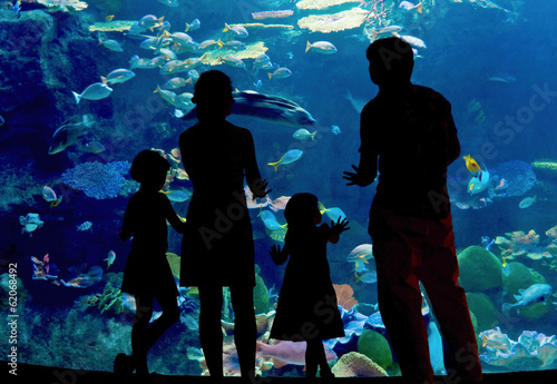 Fotografie, Obraz Silhouettes of family in oceanarium looking at aquarium