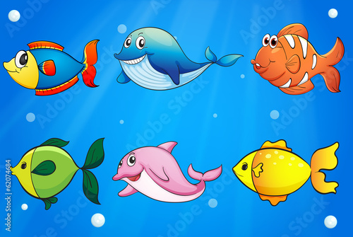 Aluminium Prints Submarine Six colorful and smiling fishes under the sea