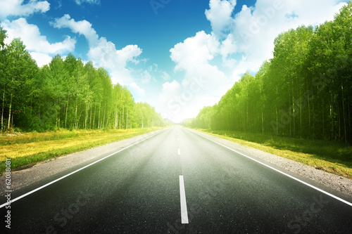 Poster Kaki road in summer forest