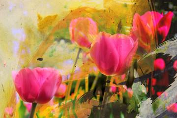 Fototapeta Tulipany fleurs peinture