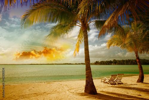 piekny-krajobraz-morski-z-drzewa-na-nieskazitelnej-plazy