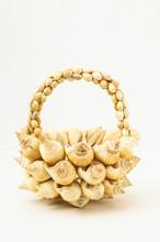 Seashell Vase Closeup