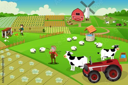 Foto  Farm life