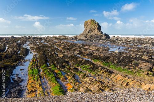 Widemouth Bay Cornwall England Canvas Print