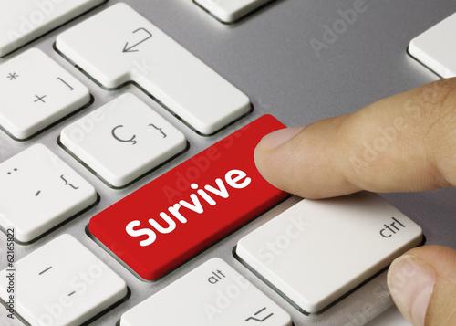 Photo  Survive. Keyboard
