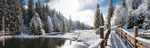 Fototapeta Панорама зимним утром в Карпатах obraz