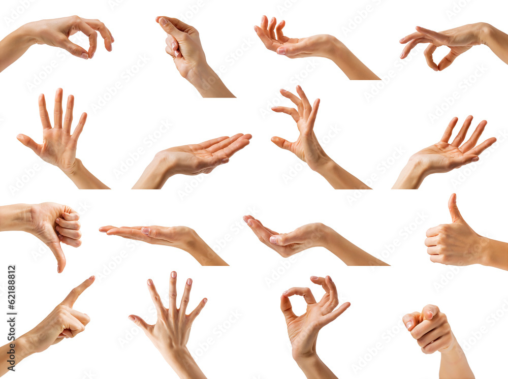 Fototapeta Collection of women hands showing different gestures