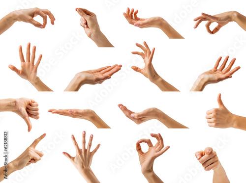 Obraz na plátne Collection of women hands showing different gestures