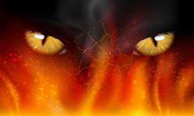 Cat's Eyes On Fire