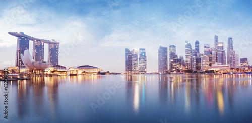 Tuinposter Singapore Panoramic image of Singapore`s skyline at night.