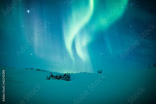 Poster Noorderlicht Northern lights (Aurora borealis) above snow