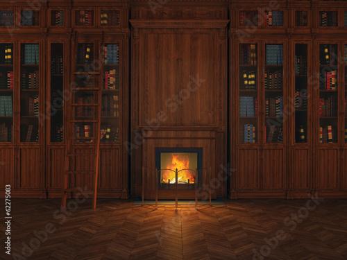 Foto op Plexiglas Wand libraries around the fireplace