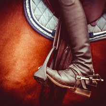 Jockey Riding Boot, Horses Sad...