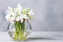 Beautiful Bouquet Of Snowdrops...
