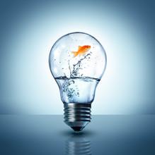 Energy Change Concept - Goldfi...