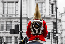A Royal Horse Guards Soldier. ...