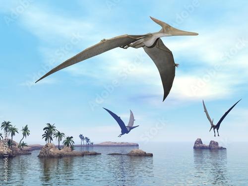 Pteranodon dinosaurs flying - 3D render Wallpaper Mural