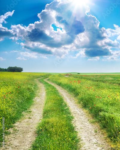 Fototapety, obrazy: Road lane and deep blue sky