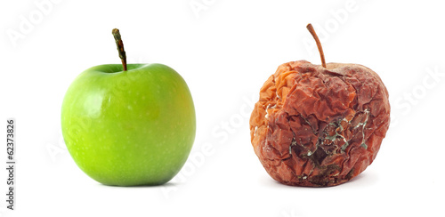 Fotografie, Obraz  Green and rotten apple