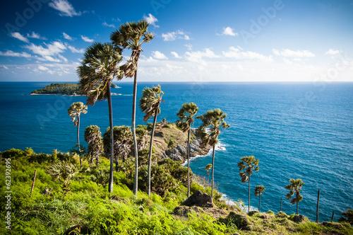 Seaview & palm trees at Promthep Cape in Phuket
