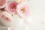 Die Schönheit in der weißen Vase