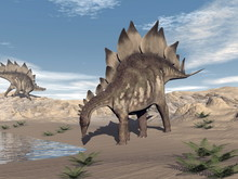 Stegosaurus Near Water - 3D Render