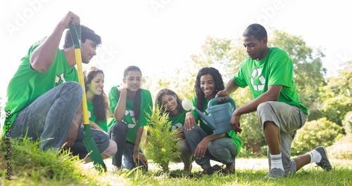 Obraz na plátně Group of environmentalists planting