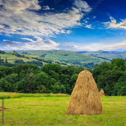 Tablou Canvas pair of haystacks and tree at mountain